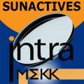 Полимерные фотохромные линзы Sunactives