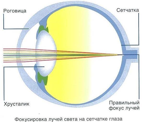 Восстановление зрения лекции жданова